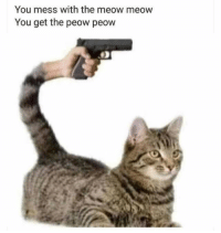 Nature, You, and Mess: You mess with the meow meow  You get the peow peow Damn nature, you scary!