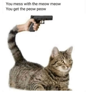 Dank, Memes, and Target: You mess with the meow meow  You get the peow peow pet me wrongly do it by Avid-yc MORE MEMES