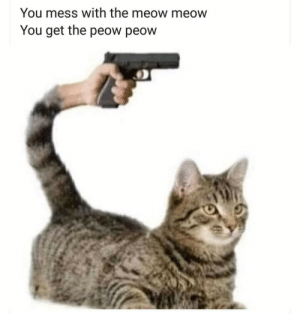 Meme dump: You mess with the meow meow  You get the peow peow Meme dump