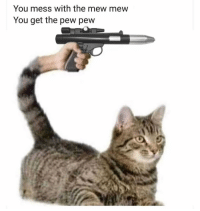 You mess with the mew mew  You get the pew pew