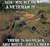 Memes, Racism, and Black: YOU MIGHT BE  A VETERAN  THERE IS NO BLACK  AND WHITE ONLY GREEN In this climate of racism I don't give a flying fuck if you are purple. We got your 6   Chapi