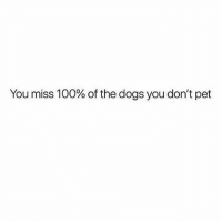 Anaconda, Dogs, and Memes: You miss 100% of the dogs you don't pet Pet ALL of the dogs. 🐶