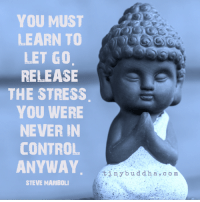 Buddha: YOU MUST  LEARN TO  LET GO  RELEASE  THE STRESS  YOU WERE  NEVER IN  CONTROL  ANYWAY  STEVE MARIBOLI  tiny buddha, co m