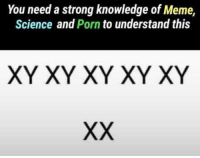 """Meme, Memes, and Porn: You need a strong knowledge of Meme,  Science and Porn to understand this  XY XY XY XY XY <p>Knowledge is power via /r/memes <a href=""""https://ift.tt/2K1bxu3"""">https://ift.tt/2K1bxu3</a></p>"""