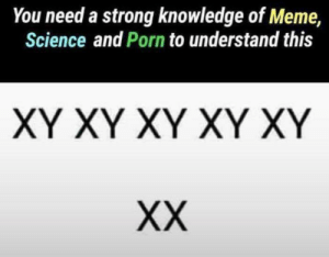 Meme, Memes, and Porn: You need a strong knowledge of Meme,  Science and Porn to understand this  XY XY XY XY XY Knowledge is power via /r/memes https://ift.tt/2K1bxu3