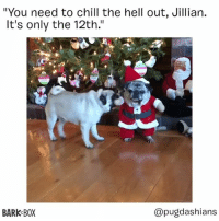"""CALM DOWN, JILLIAN . @pugdashians: """"You need to chill the hell out, Jillian.  It's only the 12th.""""  10  BARK BOX  @pugdashians CALM DOWN, JILLIAN . @pugdashians"""
