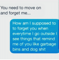 Memes, 🤖, and How: You need to move on  and forget me  How am I supposed to  to forget you when  everytime I go outside I  see things that remind  me of you like garbage  bins and dog shit It's hard to do IJS 😭😭😭😭😭