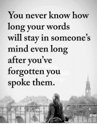 Memes, Word, and Mind: You never know how  long your words  will stay in someone's  mind even long  after you've  forgotten you  spoke them