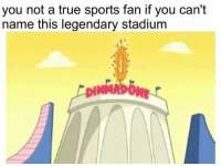 Sports, True, and Dank Memes: you not a true sports fan if you can't  name this legendary stadium
