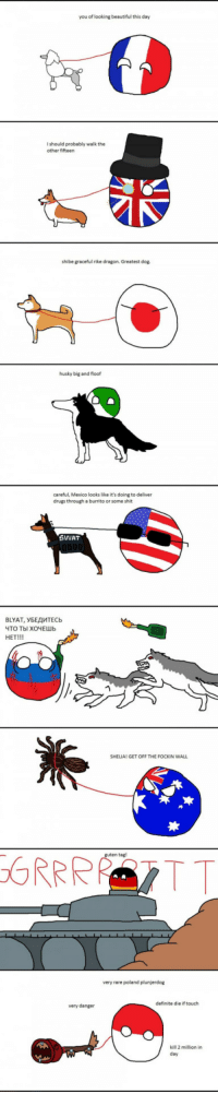 """Beautiful, Club, and Drugs: you of looking beautiful this day  I should probably walk the  other fifteen  shibe graceful rike dragon. Greatest dog.  husky big and floof  careful, Mexico looks like it's doing to deliver  drugs through a burrito or some shit  SWIAT  BLYAT, УБЕДИТЕСЬ  ЧТО ТЫ ХОЧЕШЬ  HET!!!  SHELIA! GET OFF THE FOCKIN WALI  n tagl  very rare poland plunjerdog  definite die if touch  very danger  kill 2 million in  day <p><a href=""""http://laughoutloud-club.tumblr.com/post/158565404742/countryballs-and-their-pets"""" class=""""tumblr_blog"""">laughoutloud-club</a>:</p>  <blockquote><p>Countryballs and their pets</p></blockquote>"""