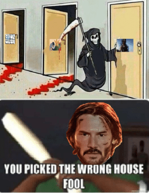 Jesus, John Wick, and Reddit: YOU PICKED THE WRONG HOUSE  FOOL He is Neo , He is John Wick and now He is the Jesus of Reddit