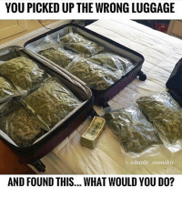 Memes, Luggage, and Cannabis: YOU PICKED UP THE WRONG LUGGAGE  ahustle cannabis  AND FOUND THIS... WHAT WOULD YOU D0? You know what I'll do @dankcity