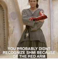 Funny, Meme, and Memes: YOU PROBABLY DIDNT  RECOGNIZE SHMI BECAUSE  OF THE RED ARM Idk about this meme. It's funny, but I feel it will get annoying if it gets really popular and overused... like a certain other meme.. starwars anakinskywalker darthvader vader shmi shmiskywalker countdooku theforceawakens rougeone starwarsrebels starwarsbattlefront battlefront thelastjedi theclonewars c3po c3p0