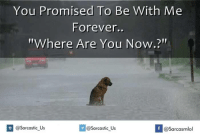 "You Promised To Be  With Me  Forever..  ""Where Are You Now.?""  If @Sarcastic Us  @Sarcastic Us  @Sarcasmlol"