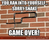 You're terrible at this!: YOU RAN INTO YOURSELF  SORRY SNAKE  GAME OVER!  memecenter.com/kupo707 You're terrible at this!