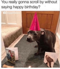 Birthday, Party, and Happy Birthday: You really gonna scroll by without  saying happy birthday?  AD0gg wholseome birthday party