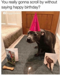 Aye bih, love me😊 Follow Us👉 @so.mexican Via:fb doggonews: You really gonna scroll by without  saying happy birthday? Aye bih, love me😊 Follow Us👉 @so.mexican Via:fb doggonews