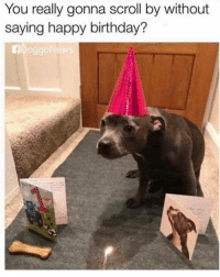 Birthday, Memes, and Smh: You really gonna scroll by without  saying happy birthday?  oggo Smh 🎈 🎂