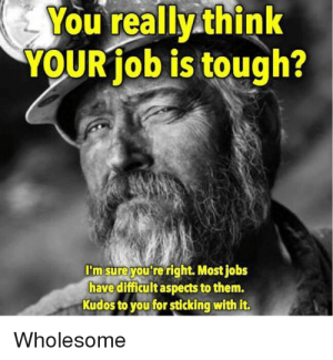 Tough, Wholesome, and Job: You really think  YOUR job is tough?  I'm sure you're right. Mostjobs  have difficult aspects to them.  Kudos to you for sticking with it.  Wholesome You doing a great job. Yes, you the one reading this. Have a great day.🤗