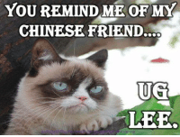 Memes, Chinese, and 🤖: YOU REMIND ME OF MY  CHINESE FRIEND..OO  UG  LEE.  nsBnity