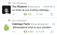 The Weeknd, Yee, and Clowns: You retweeted  The Week nd @the weeknd  30/06/2012  yo what up you fucking cabbage  13K  tR You retweeted  Cabbage Facts  real cabbagefact 5d  @theweeknd what is your problem  t 4,502  4,576 This doesn't belong to @Michaelclifford TAG YOUR FRIENDS Backup: @dank.dino dank memes meme fazeup fazeclan crazy funny hillary trump rattpack lol omg clown clowns youtube minecraft christmas president mannequin mannequinchallenge relatable yee yeedino