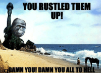Memes, 🤖, and Anger: YOU RUSTLED THEM  UPI  YDAMN YOU!DAMN YOU ALL TO HELL I decided I was going to start posting here every time I have to wait for class.