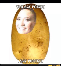 YOU SAY POTATO  I SAY POOTATO  funny CO