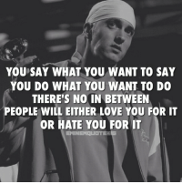 Life I guess eminem: YOU SAY WHAT YOU WANT TO SAY  YOU DO WHAT YOU WANT TO DO  THERE'S NO IN BETWEEN  PEOPLE WILL EITHER LOVE YOU FOR IT  OR HATE YOU FOR IT  EMINEM UITE Life I guess eminem