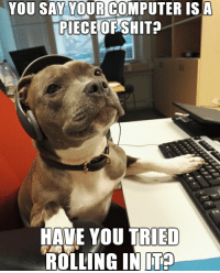 Hello, Memes, and Computer: YOU SAY YOUR COMPUTER ISA  PIECE OF SHITP  RIED  HAVE YOU  ROLLING INTE Hello, yes, this is dog Follow @9gagcute servicedog itcrowd