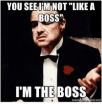 "Remember when the Godfather said this epic sentence: YOU SEEIHM NOT LIKE A  BOSS""  I'M THE Boss Remember when the Godfather said this epic sentence"