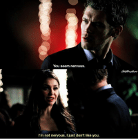 [3x09] If Klaus would've known that this was Katherine lol 😂 ⠀ Q: Katherine or Klaus? ⠀ My edit give credit [ katherinepierce klausmikaelson tvd thevampirediaries vampirediaries tvdforever|177.5k]: You seem nervous.  I'm not nervous. I just don't like you. [3x09] If Klaus would've known that this was Katherine lol 😂 ⠀ Q: Katherine or Klaus? ⠀ My edit give credit [ katherinepierce klausmikaelson tvd thevampirediaries vampirediaries tvdforever|177.5k]
