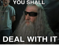 deal with it: YOU SHALL  DEAL WITH IT