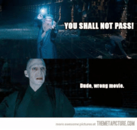 Memes, Awesome Pictures, and 🤖: YOU SHALL NOT PASS!  Dude, wrong movie.  more awesome pictures at  THEMETAPICTURE.COM ~Dobby
