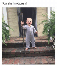 Funny, Meme, and Memes: You shall not pass! (@memezar) posts amazing memes. You're missing out if you're not following them.
