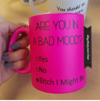 Bad, Mood, and Link: You should  ARE YOU N  A BAD MOOD?  oYes  oNo  ·Bitch I Might  Be Omfg @meanmugsbyftgs !!! You need to follow @meanmugsbyftgs - funniest gifts ever 🤣 Link in their bio! @meanmugsbyftgs