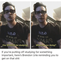 I've been asking myself the same thing. I have so many auditions to read but y'all are good at writing so it's nice.: You SHOULD be studying.  What are you doing?  If you're putting off studying for something  important, here's Brendon Urie reminding you to  get on that shit I've been asking myself the same thing. I have so many auditions to read but y'all are good at writing so it's nice.