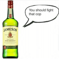 Irish, Fight, and Whiskey: You should fight  that cop  JAMESON  IRISH WHISKEY