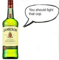 Irish, Lol, and Memes: You should fight  that cop  us  JAMESON  IRISH WHISKEY Liquid balls in a bottle.. I stay clear away...lol