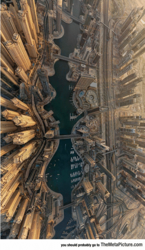 Tumblr, Blog, and Http: you should probably go to TheMetaPicture.com srsfunny:Amazing View Of Dubai From Above