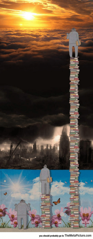srsfunny:Books Make Everything Clearer: you should probably go to TheMetaPicture.com srsfunny:Books Make Everything Clearer