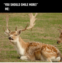 "9gag, Dank, and Smile: ""YOU SHOULD SMILE MORE!""  ME: Don't tell me what to do https://9gag.com/gag/aGjNmz6?ref=fbpic"