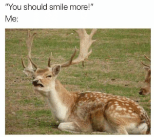 "Meirl by D3RPICJUSZ MORE MEMES: ""You should smile more!""  Me: Meirl by D3RPICJUSZ MORE MEMES"