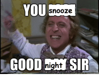 You, Snooze, and  Night: YOU  snooze  night