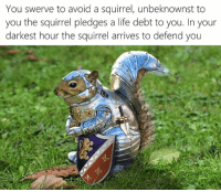 Squirrel: You swerve to avoid a squirrel, unbeknownst to  you the squirrel pledges a life debt to you. In your  darkest hour the squirrel arrives to defend you