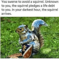 Life, Memes, and Http: You swerve to avoid a squirrel. Unknown  to you, the squirrel pledges a life debt  to you. In your darkest hour, the squirrel  arrives. At your service via /r/memes http://bit.ly/2AkbkA3