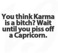 Karma: You think Karma  is a bitch? Wait  until you piss off  a Capricorn.