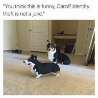 """Memes, 🤖, and Identity Theft: """"You think this is funny, Carol? Identity  theft is not a joke."""""""