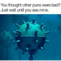 Punnies: You thought other puns were bad?  Just wait until you sea mine. Punnies