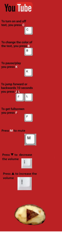 "Club, Tumblr, and Mute: You Tube  To turn on and off  text, you press  To change the color of  the text, you press  To pause/play  you press K  To jump forward or  backwards 10 seconds  you presS J/L  To get fullscreen  you presS  Press M to mute  Press V to decrease  the volume  Press A to increase the  volume <p><a href=""http://laughoutloud-club.tumblr.com/post/173477928747/youre-welcome"" class=""tumblr_blog"">laughoutloud-club</a>:</p>  <blockquote><p>You're welcome!</p></blockquote>"