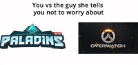 Video Games, Paladin, and Beta: You vs the guy she tells  you not to worry about  BETA  PALADIN  OVERWINTCH